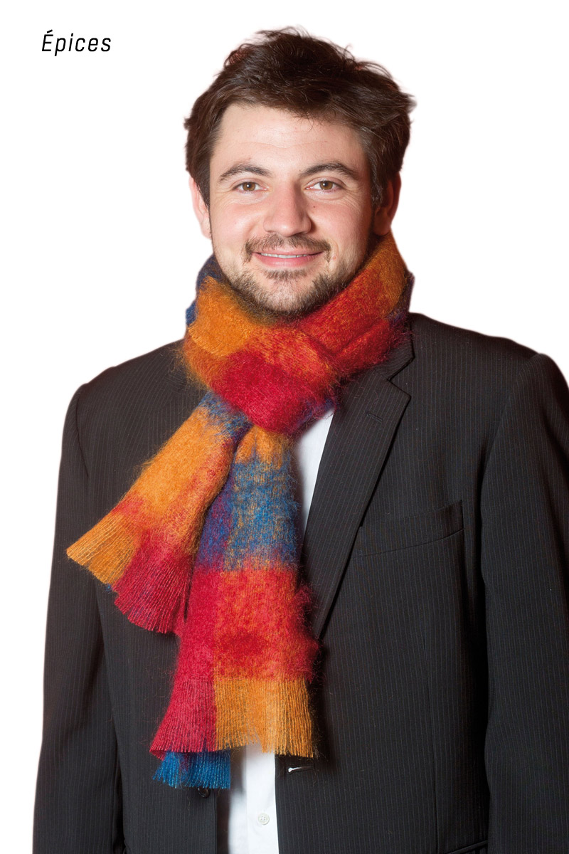 grande echarpe laine mohair et soie homme cossaise miss gle vente d 39 echarpe en laine made in f. Black Bedroom Furniture Sets. Home Design Ideas